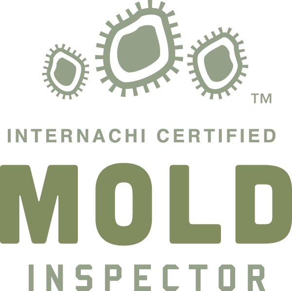 Mold Inspection Tacoma