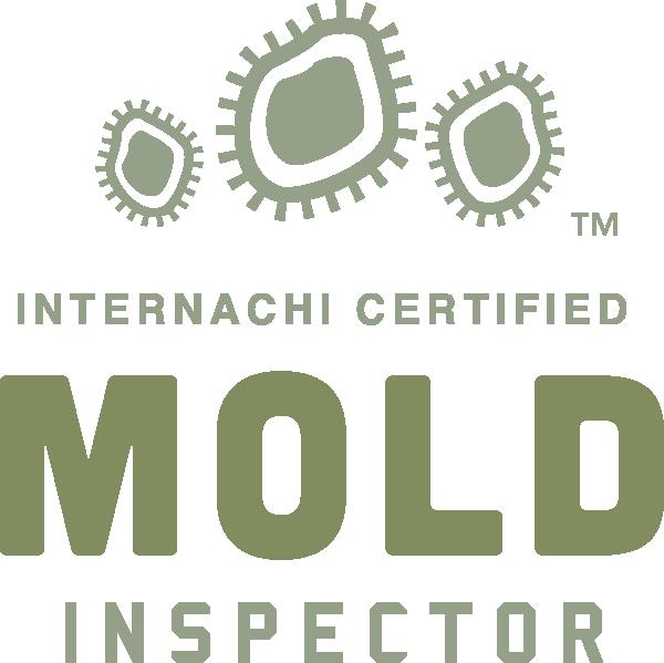 Mold Inspection Tacoma