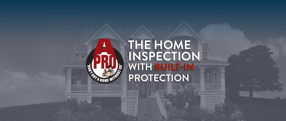 Tacoma winter home inspection