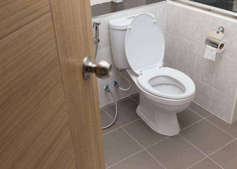 Toilet Inspection Tacoma